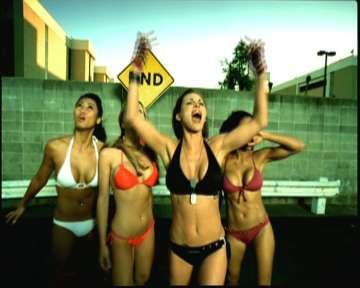 Bikini bandits girls