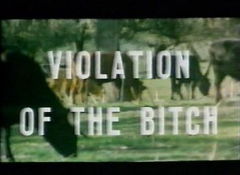 Violation of the Bitch VHS The Coming of Sin uncut Blu-ray Blood Hunger: The Films of José Larraz