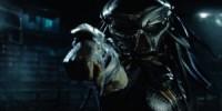 Predator: Upgrade kommt uncut mit FSK 16-Freigabe in die Kinos