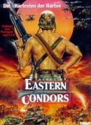 Operation Eastern Condors