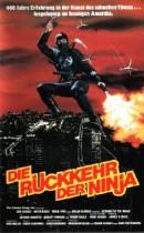 R�ckkehr der Ninja, Die