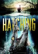 Hatching,