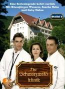 Schwarzwaldklinik, Die
