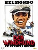 Windhund,