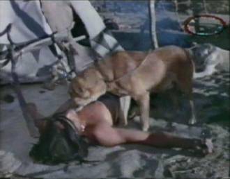 watch Hunde Leckt Frau